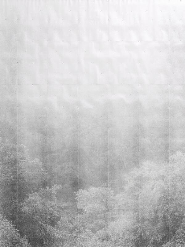 """Adam Jeppesen: """"XX·Tikal"""", 2011. Ed. 3/3 + 2 AP. Xerografi, sammensat af 42 sider syrefri papir, monteret med nåle. Indrammet i egetræ af Frese og Sønner, København. Lysmål 172 x 133 cm."""